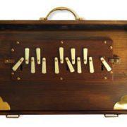 SHRUTI BOX M1